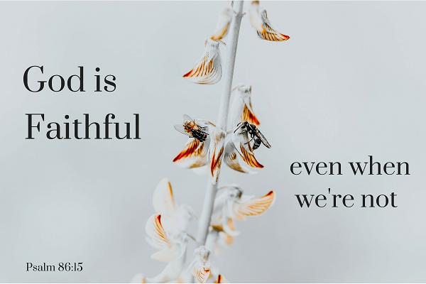 Psalm 86_15