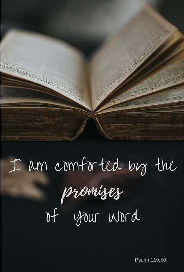 Psalm 119_50