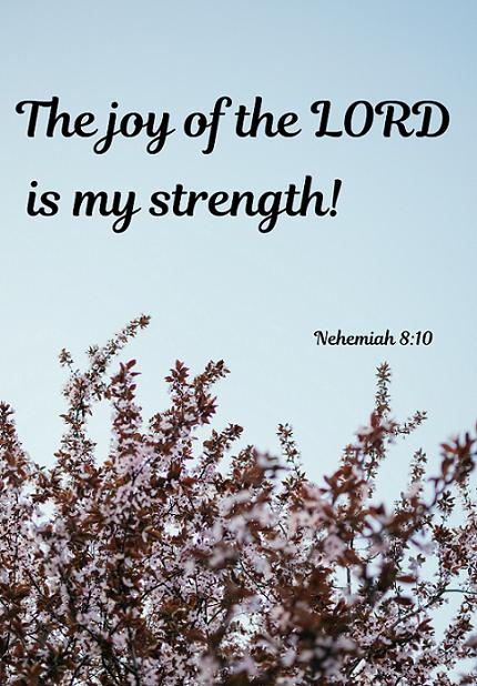 rejoices